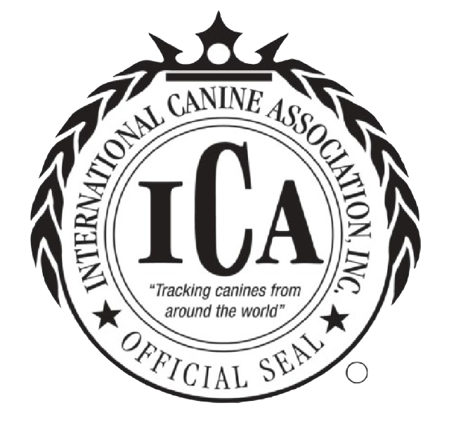 Carrier Family Doodles is an ICA Premier Retailer