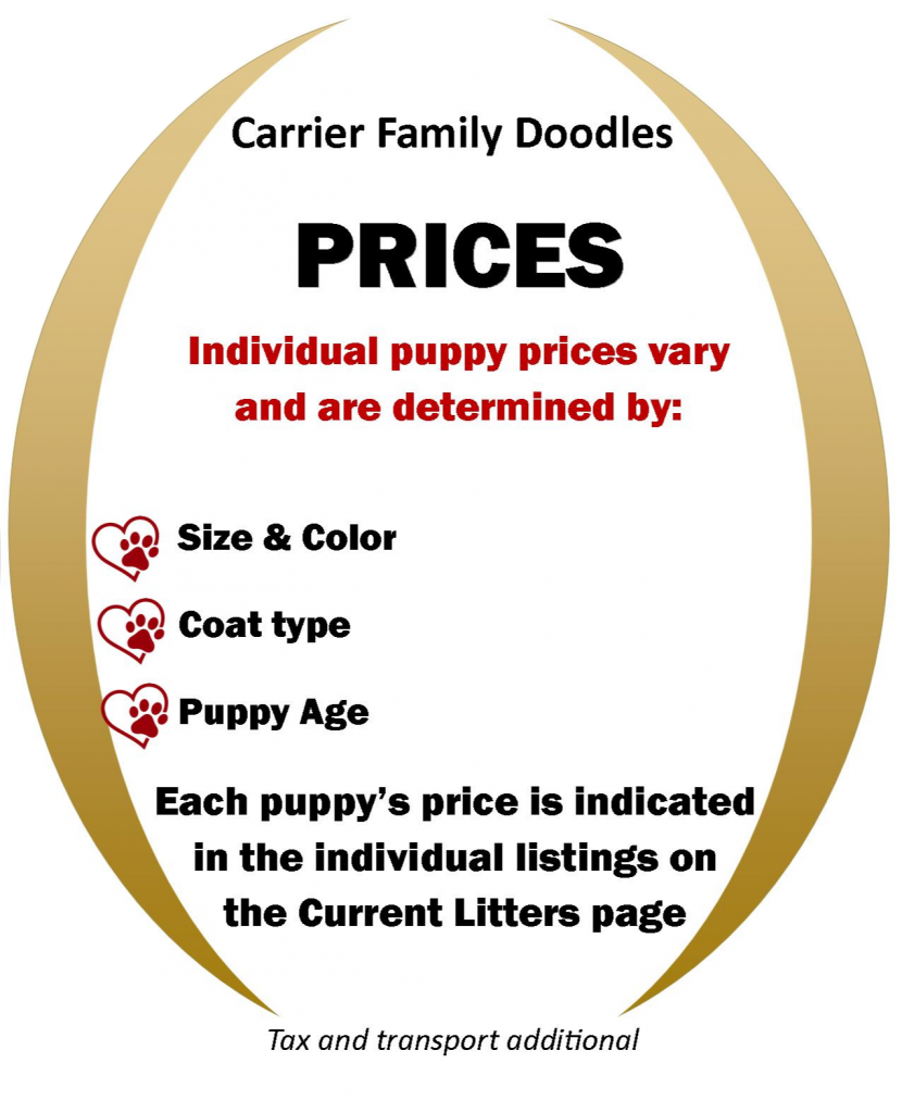Carrier Family Doodles prices